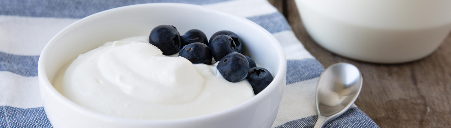 A picture of a bowl of white yoghurt served with blueberries.